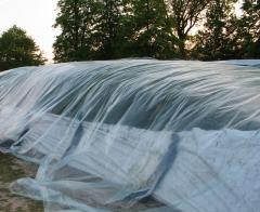 Film sous-couche - 8 m x 50 m - Transparent