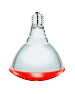 Ampoule infrarouge I PAR - Interheat - 175 W - Rouge - x 2