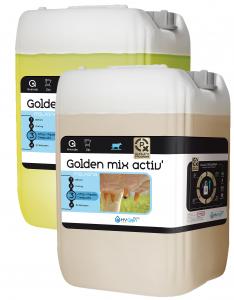 Golden Mix - 2 x 10 kg Activator et Base