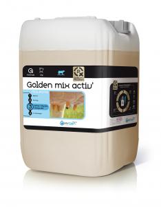 Golden Mix Activator - Fût de 62 kg