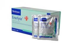 Réhydratant Enerlyte Plus - Sachet de 100 gr