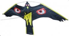 Cerf volant rapace - Volgeur - Motif oeil brillant